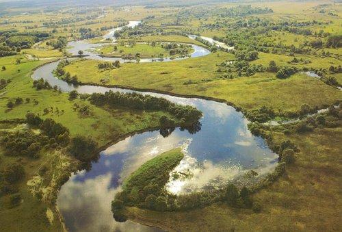 Экологический комитет обратился к Кабмину из-за передачи воды, леса и рыбы в МинАПК