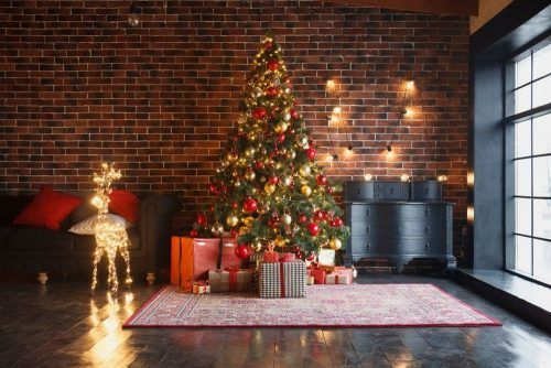 Куда безопасно сдать елку после новогодних праздников: список адресов в Киеве