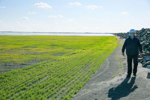 «Метінвест» вклав вісім млрд грн в екологію Кривого Рогу в 2020 році