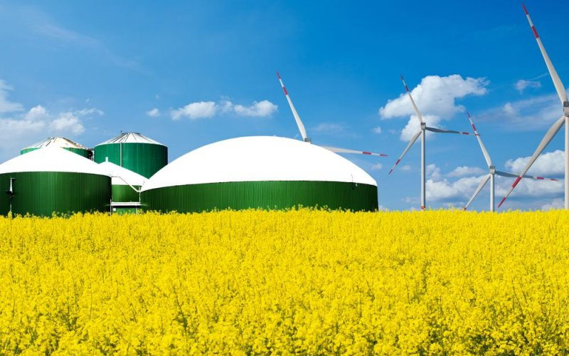Эксперт рассказал, как биометан может заменить Украине природный газ