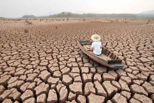 """Засуха может стать следующей """"пандемией"""" ― заявление ООН"""