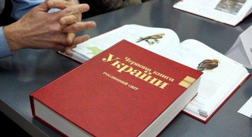 Рослини Червоної книги України: які причини зникнення та як захистити