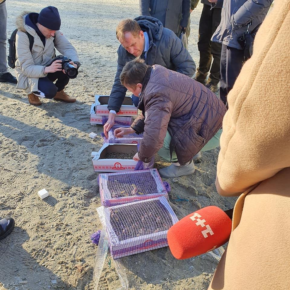 Работники ГЭИ выпустили на волю более сотни редких птиц
