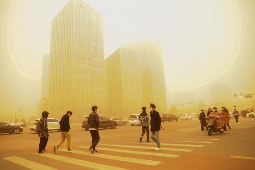 Китай и Монголию накрыли мощнейшие за 10 лет песчаные бури. Фото и видео стихии