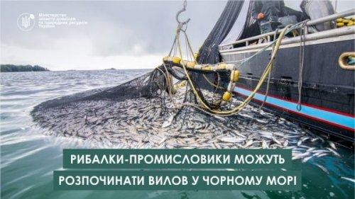 Рыбакам-промысловикам позволили вылов в Черном море