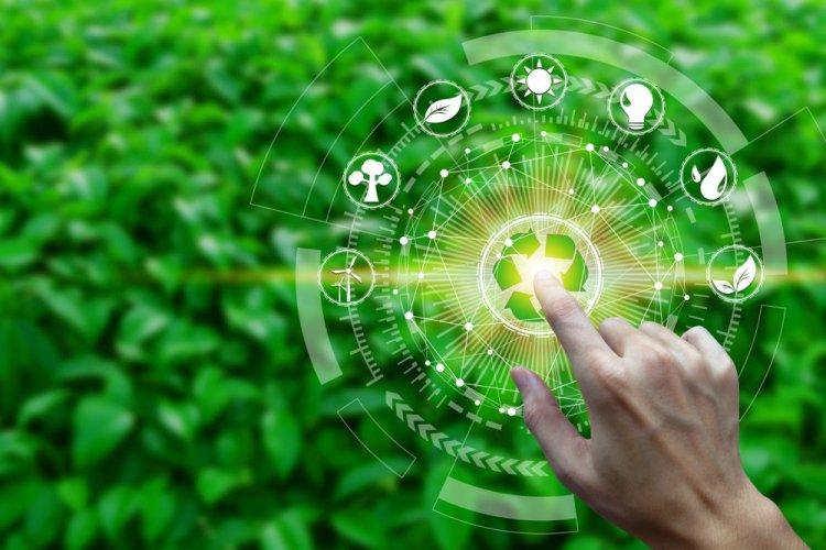 Екологічна політика України: цілі, напрями та інструменти реалізації