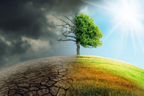 Країни G20 не дійшли згоди щодо двох кліматичних цілей