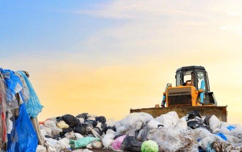 Гори сміття під Сіверськодонецьком поховали під собою червонокнижні рослини
