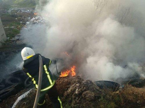 В Николаеве горела заброшенная свалка. Фото