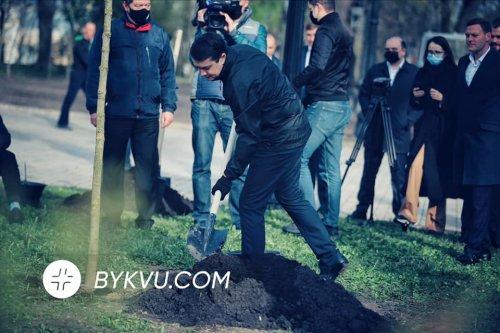 Нардепи під Верховною Радою висадили дерева. Фотофакт