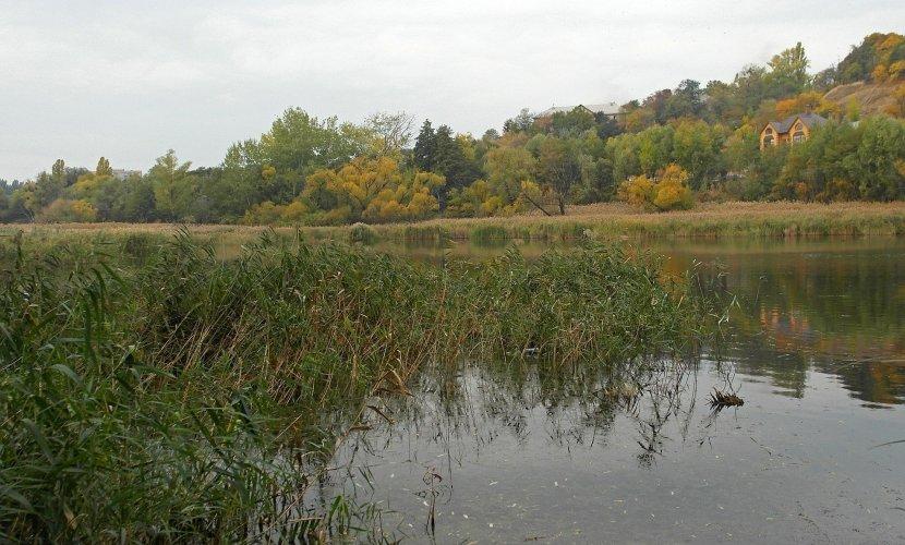 Комиссия Киевсовета одобрила создание экопарка на Совских прудах