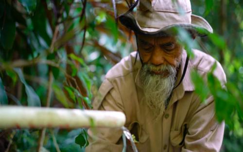 На острові Ява 69-річний дідусь самотужки висадив 11 тисяч дерев. Фото