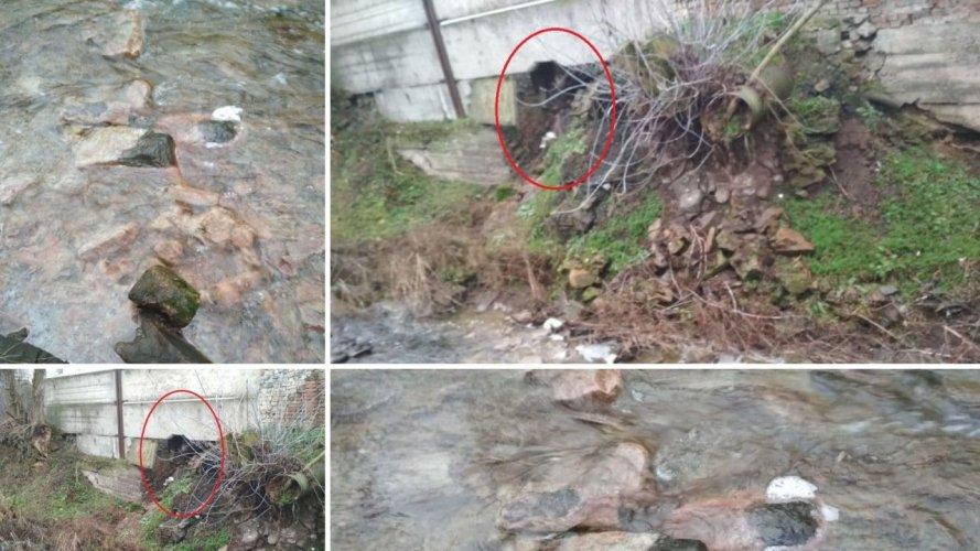 В Черкасской области сахарный завод загрязняет реку: ГЭИ и полиция бездействуют