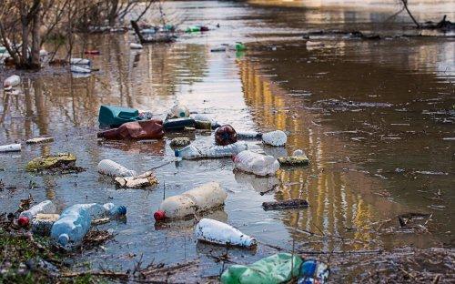 На Закарпатье на побережье пограничных рек нашли десятки незаконных свалок