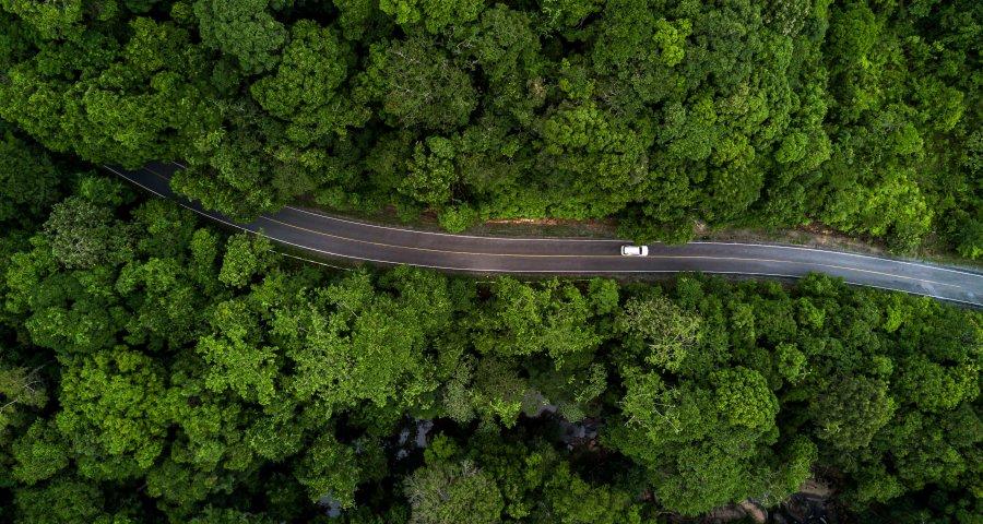 Google будет показывать экологические маршруты