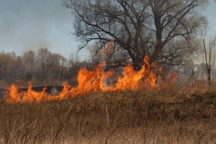 На Ривненщине женщина чуть не сожгла село