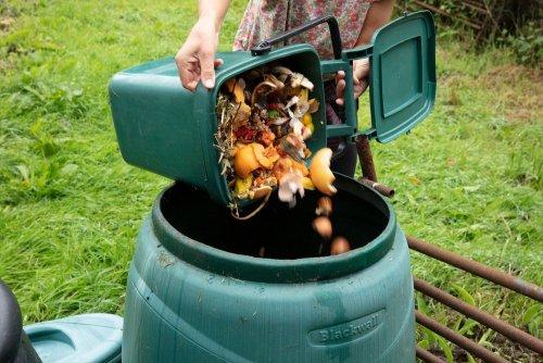 Как Львов решает проблему с органическим мусором