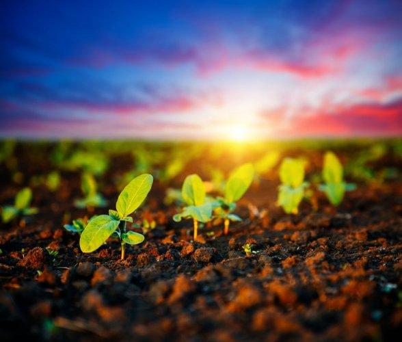 Аграрии сформировали общую позицию по климатической политике Украины