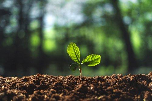 Екокомітет Ради рекомендував до розгляду законопроєкт 5414 «Про екоконтроль»