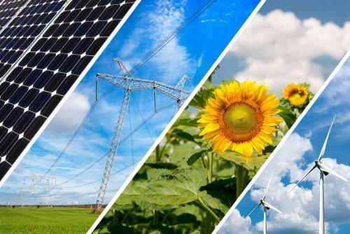 Приватний сектор може відіграти провідну роль в реалізації Україною кліматичних зобов'язань – IFC