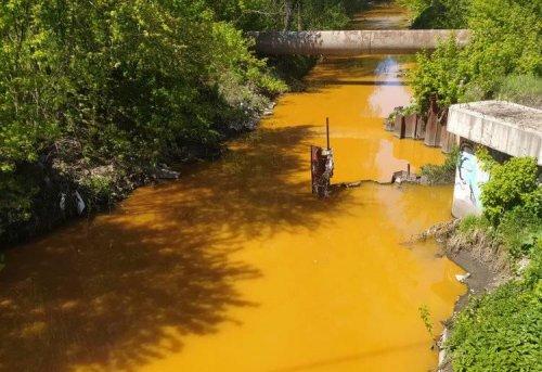 Отруйно-жовта річка Либідь: стало відомо, що показав аналіз проб води