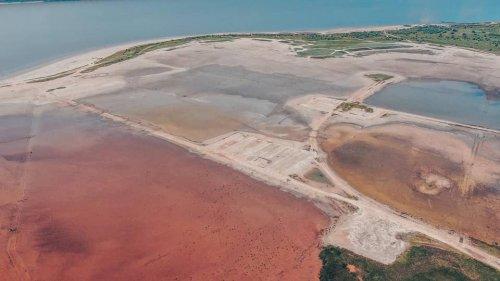 """""""Марсіянські пейзажі"""": лиман на Одещині змінив колір. Фото та відео"""