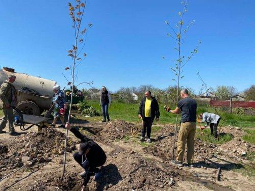 Под Николаевом местные жители на месте свалки посадили парк: фото