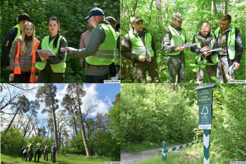 В Украине провели интерактивное обучение для лесоводов