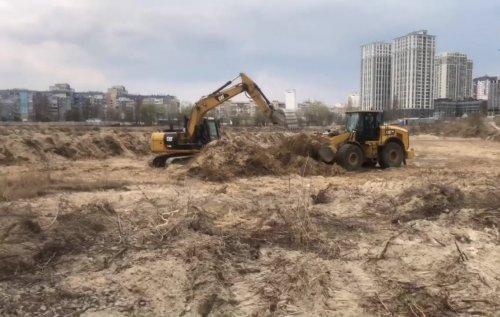 Забудовники Вирлиці у Києві знищили птахів і потривожили нерест риби: відео