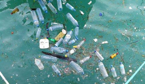 На Київщині сміттєвий полігон отруює мальовниче озеро. Відео