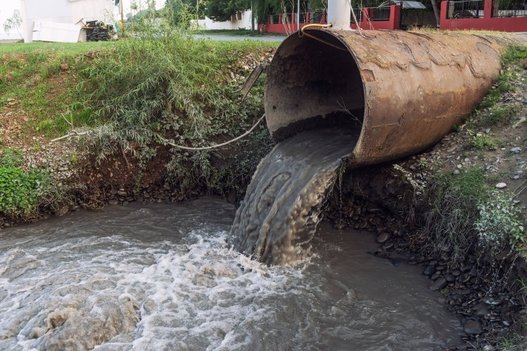 Река Ворскла в Полтаве страдает: туда сливают фекалии и мочу. Видео
