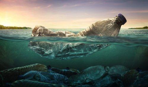 Как очистить водоемы от микроскопического пластика: новое изобретение ученых