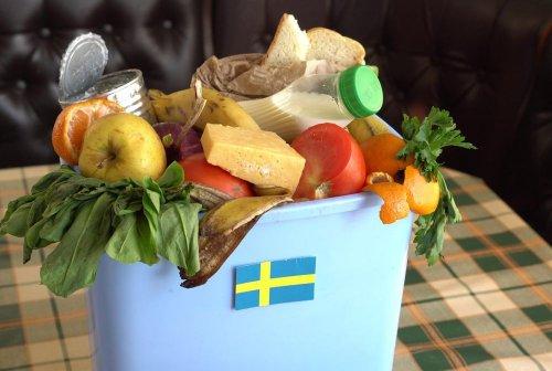 Украинцам рассказали об опыте Швеции в выработке энергии из мусора