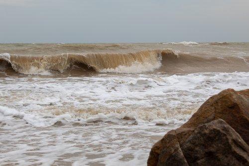 Узбережжю Азовського моря загрожує екологічна катастрофа – біолог