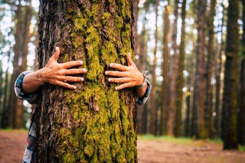 Европейские практики управления отходами и использование шлаков: еженедельный дайджест экологических событий