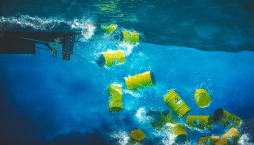 Тихий океан близ Калифорнии загрязнили тысячи бочек с дустом: видео