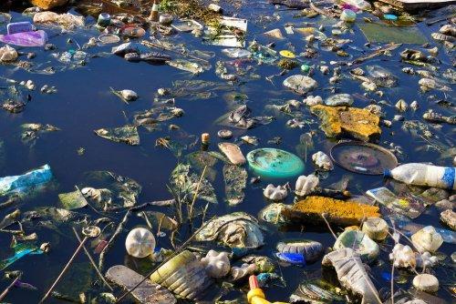 Лишь 20% мусора, который рекой Тиса попал в Венгрию, имеет украинское происхождение — ГЭИ