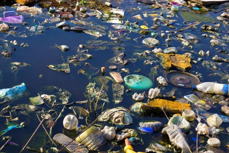 Лише 20% сміття, яке річкою Тиса потрапило в Угорщину, має українське походження — ДЕІ