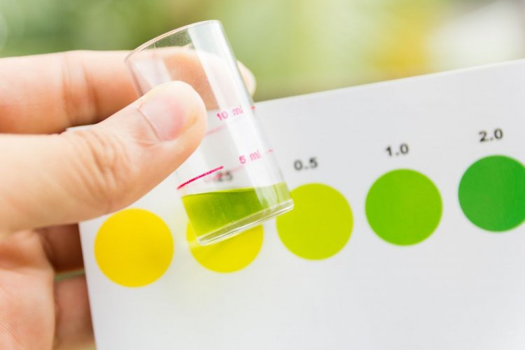 """Українські хіміки для зниження викидів CO2 хочуть виробляти """"зелений"""" аміак"""