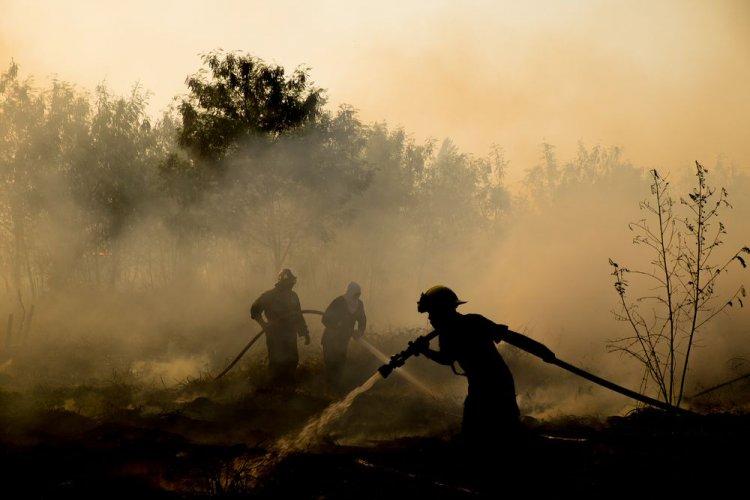 За добу на Миколаївщині сталося 13 пожеж: горіли трава і сміття
