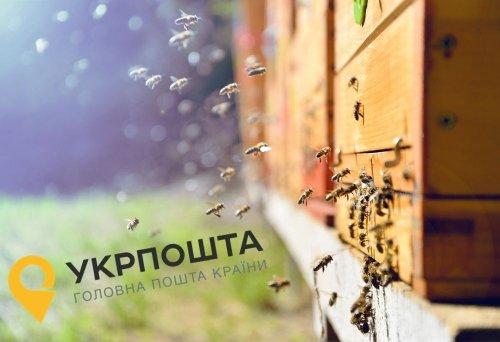 """""""Воскресіння"""" бджіл на """"Укрпошті"""": скандал отримав продовження"""