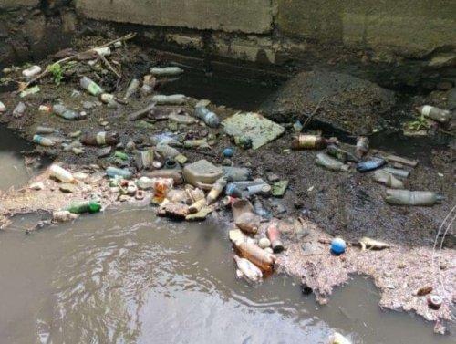 В Днепре из реки Гнилокиш вывезли 1500 тонн мусора. Фото