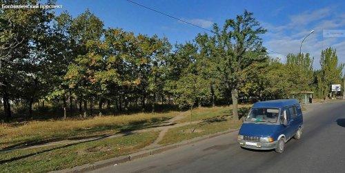 У Миколаєві хочуть вирубати дерева, щоб побудувати заправку та СТО