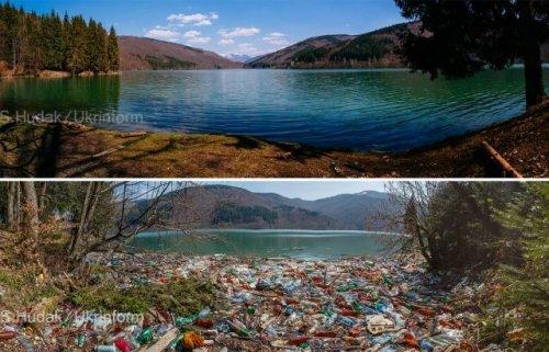 """Волонтеры убрали побережье """"Закарпатского моря"""" от тонны мусора. Видео"""