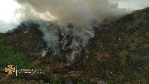 У Маріуполі сталася пожежа на міському сміттєзвалищі. Фото