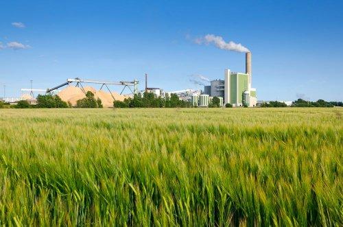 У Кривому Розі створять індустріальний екопарк із переробки промислових відходів