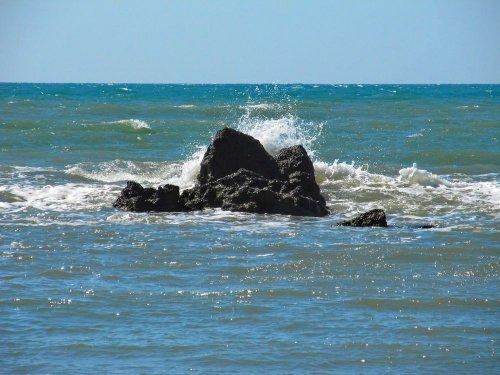 """Черное море у берегов Одессы """"зацвело"""" и стало токсичным. Фото"""