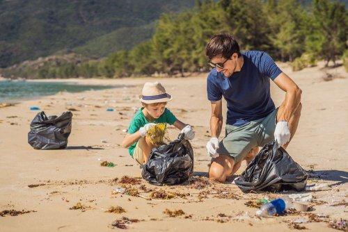 В Украине начался масштабный проект по очистке пляжей. Фото