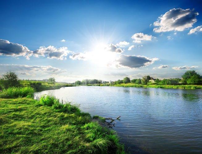 Екологи розповіли, в яких областях України торгують землями заповідного фонду
