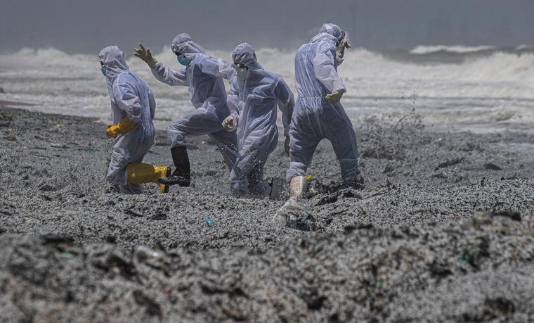 Экологическая катастрофа на Шри-Ланке: из-за пожара на судне пляжи покрыл опасный пластик. Фото, видео